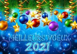 MEILLEURS VŒUX 2021 À TOUS